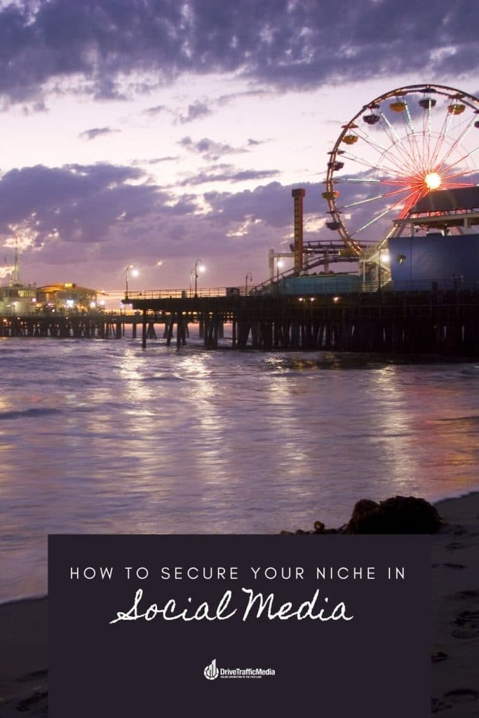 how-to-boost-your-niche-with-the-help-of-a-digital-marketing-agency-in-Los-Angeles-pinterest